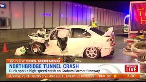duck sparks high speed crash in northbridge tunnel the west