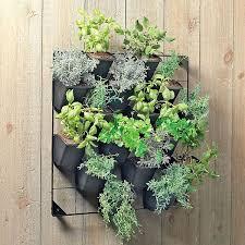 intricate hanging wall garden design alluring living room indoor