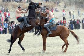 Kentucky how far can a horse travel in a day images Misadventure travel writer kirsten koza 39 s kyrgyzstan expedition jpg