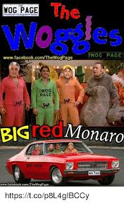 Wog Memes - the wog page facebook nstagram twitter ewog page
