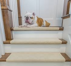 perfect ideas bullnose carpet stair treads carlisle adhesive tread