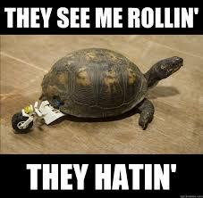 Roll Meme - turtle lego roll memes quickmeme