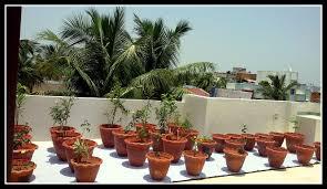 kitchen garden spaces img 20140814 wa0006