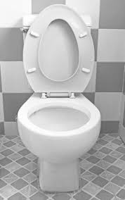 10 things you didn u0027t know about toilets that are totally
