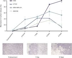 normal and malignant cells exhibit differential responses to