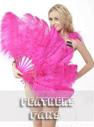 feather fans feathers bouquet wholesale feathers boa buy burlesque feather