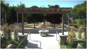 Backyards  Splendid Backyard Vineyard Design  Inspirations - Backyard vineyard design