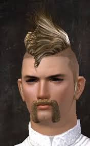 new hairstyles gw2 2015 high quality images for new hairstyles gw2 2015 3androiddesktop3 ga