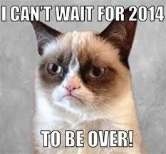 Grumpy Cat New Years Meme - th id oip tpu4ioh dqvaaoqvuhmjfghag3