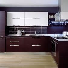 modern kitchen cabinets design ideas home designs modern kitchen cabinets designs