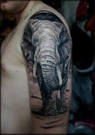 the 25 best realistic elephant tattoo ideas on pinterest