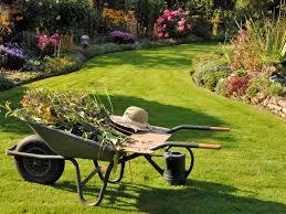 cura giardino la cura proprio giardino news e articoli sul web marti