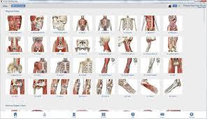 Human Anatomy Atlas Atlas De Anatomia Humana Human Anatomy Atlas Software R 35
