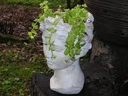 Large Head Planters Vases And Planters