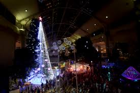 australian sets christmas tree record with 518 838 lights the