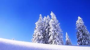 winter snow desktop wallpaper hd 49801 dongxue series