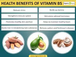 Vitamin Deficiency And Hair Loss 9 Surprising Benefits Of Vitamin B5 Pantothenic Acid Organic Facts