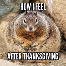 top 10 thanksgiving squirrel pictures broxtern wallpaper and