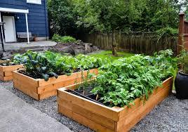 small kitchen garden ideas small garden with vegetables ideas gardener vegetable