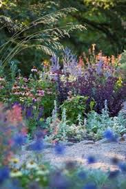 10 Perennials That Thrive In by 10 Perennials That Thrive In The Sun Perennials Plants And Gardens