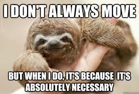 Funny Sloth Memes - sloth memes quickmeme