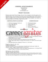 Pmo Manager Resume Sample Pmo Director Resume Lukex Co