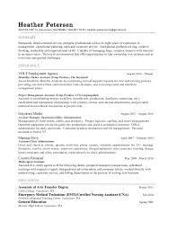 Results Driven Resume Example by Detail Oriented Resume Example 3663