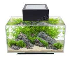 6 gallon fish tank glass clear aquarium led light freshwater