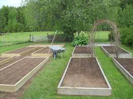 backyard garden house design with diy wood raised bed garden box