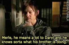 Daryl Dixon Meme - twd the walking dead brothers daryl dixon norman reedus amc merle