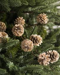 white pine cone frosted pinecone pick ornament set balsam hill