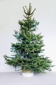 diy wrapped christmas tree basket fall for diy