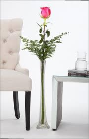 Single Stem Glass Vase Vases Amazing Single Stem Glass Vase Single Stem Glass Vase