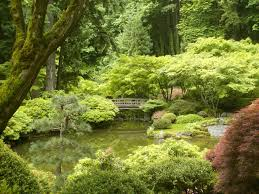the zen garden and your life despicable yet wonderful you