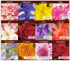 flower of the month pictures of birth month flowers 25 trending birthday month flowers