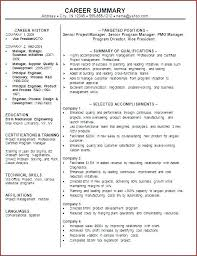 professional summary exles for resume sle resume professional summary