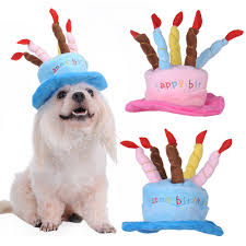 Halloween Happy Birthday by Aliexpress Com Buy Winter Fleece Dog Pet Hat Happy Birthday Cake
