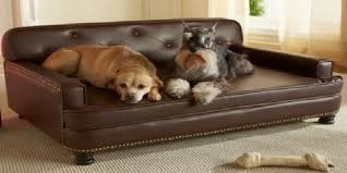 best sofa fabric for dogs best sofa dog owners cozysofa info