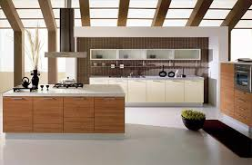 awesome contemporary kitchen design ideas pictures rugoingmyway contemporary kitchen design caruba info