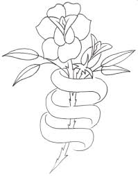 dove with ribbon tattoo sketch photo 3 photo pictures and