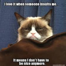 Awesome Quotes About Cats Being - 650 best funnies images on pinterest grumpy cat quotes funny