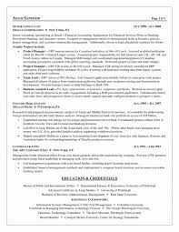 Systems Analyst Resume Example by Stunning Resume System Analyst Photos Simple Resume Office