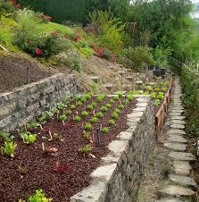 Steep Hill Backyard Ideas How To Turn A Steep Backyard Into A Terraced Garden Terrace