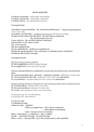 Entry Level Resume Sample No Work Experience by 4th Lecture Respiratory System