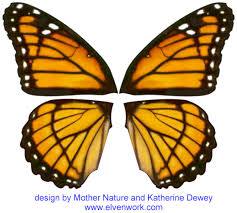 fairy wing designs by katherine dewey printables pinterest