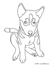 german shepherd puppy coloring page at pages eson me