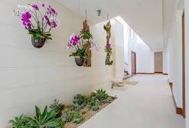 indoor planting wonderful indoor planting idea choices to choose from decohoms