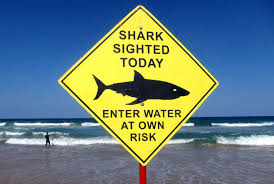Florida Shark Attack Map World U0027s Most Shark Infested Areas And How To Stay Safe From Shark