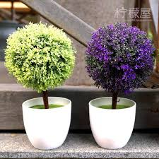 small potted plants small potted plants indoor decoration home furnishing creative