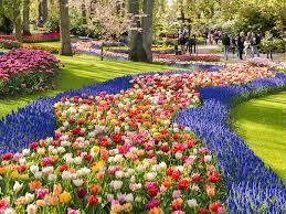 most beautiful flower gardens in the world keukenhof u2013 the
